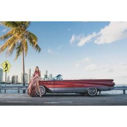 Book a Miami Tour Today!