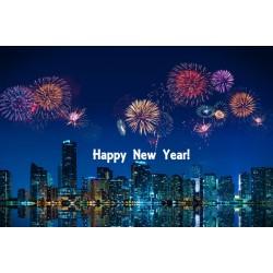 Happy New Year Miami!