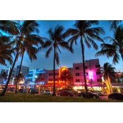 The Best Miami Tours!