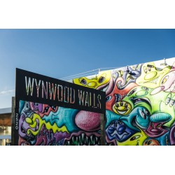 Want to Tour Miami and Wynwood Completely?