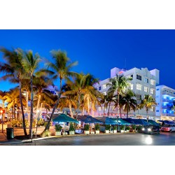 Looking for a Tour in Miami Beach?