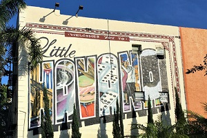 Little Havana Miami & Miami Beach Car Tour