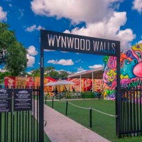 City Tour Wynwood in Convertible Classic Car Tours