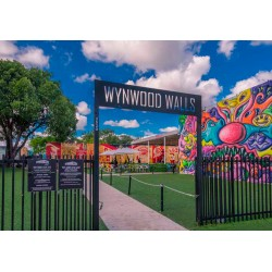 Ever wonder of all the places you should Visit in Wynwood?